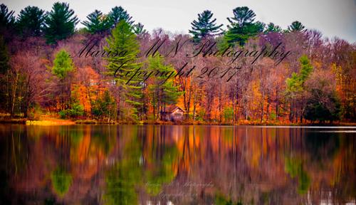 White-Lake-Painted-reflection-final-web